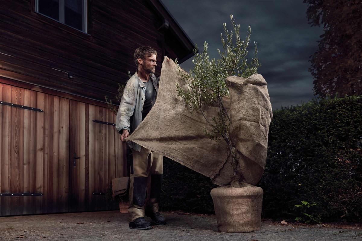 winterschutz fuer pflanzen