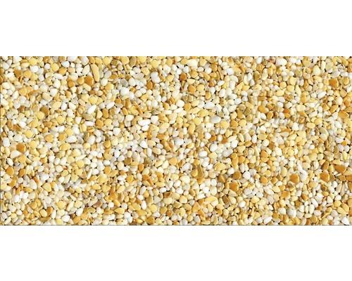 Kit de tapis de pierre 1m² Ravello fin jaune zone extérieure - sol