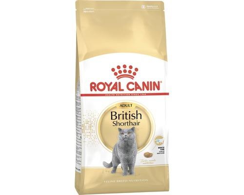 Nourriture sèche pour chats, ROYAL CANIN British Shorthair 34, 10kg