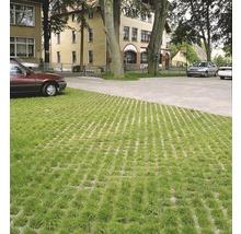 Pflasterstein Rasengitter Beton grau 60 x 40 x 8 cm-thumb-4