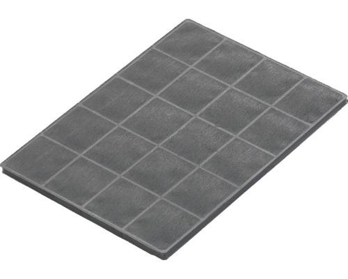 2 filtres à charbon actif AKF 300