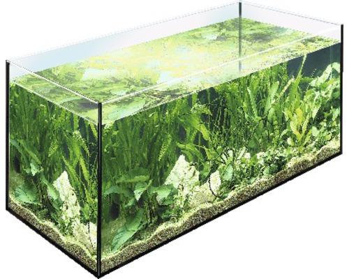 Aquarium EHEIM 30 x 20 x 20 cm, 12 litres