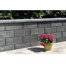 Pierre de construction iBrixx System brique pleine quartzite 50x25x20cm-thumb-4