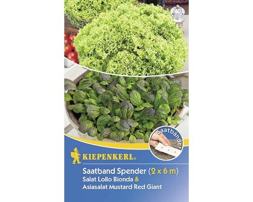 Distributeur Bio graines de Lollo Bionda et salade asiatique Kiepenkerl