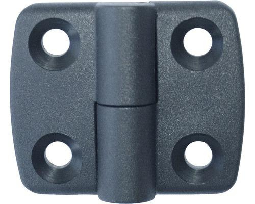 Charnière en plastique (résistante aux intempéries) non déboîtable à gauche 30x30mm