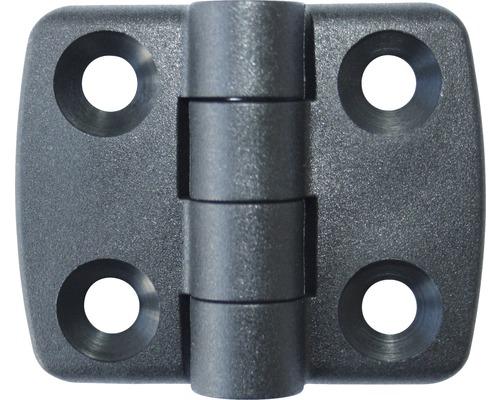 Charnière en plastique (résistante aux intempéries) non déboîtable 30x30mm