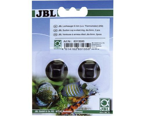 Ventouse à anneau JBL 6mm, 2 pièces