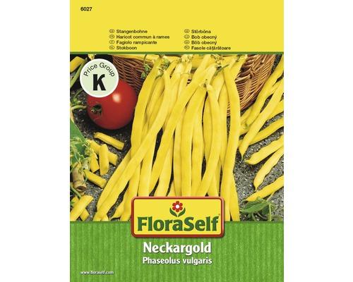Graines de légumes haricot à rames «Neckargold» FloraSelf