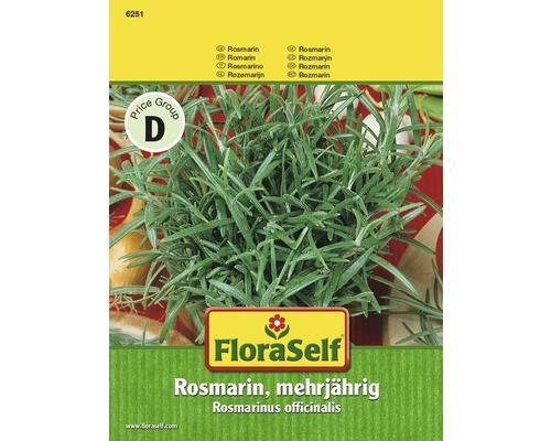 Graines de romarin «vivace» FloraSelf