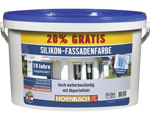 Peinture pour façade au silicone blanc 12l (20% gratuits!)