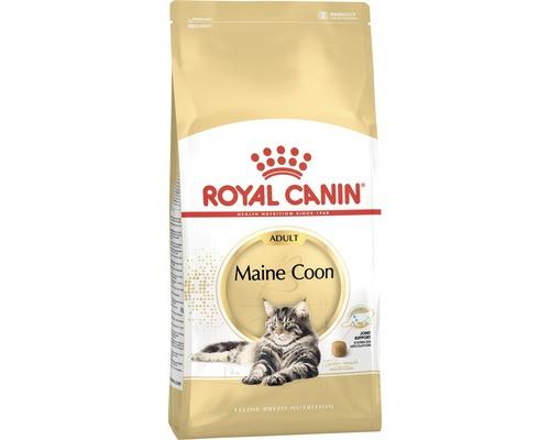 Nourriture pour chats Maine Coon Royal Canin 31, 4 kg
