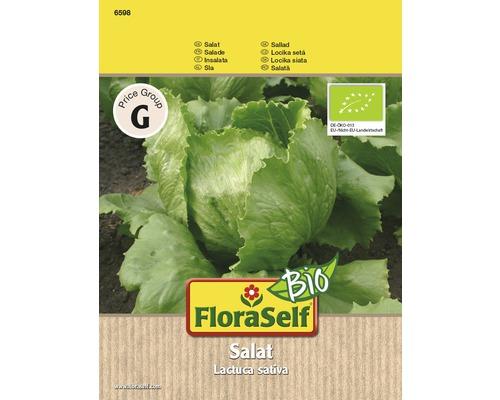 Salade Batavia bio graines de salades FloraSelf®