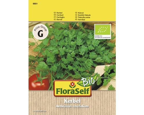 Cerfeuil bio semences de fines herbes FloraSelf®