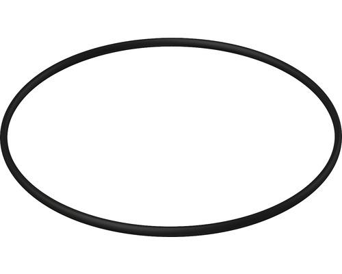 O-Ring 72 x 2,5 für APZ6, APZ106