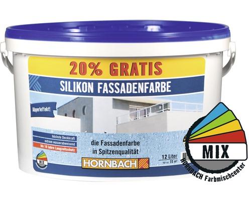 Peinture Silicone Peinture Silicone Pour Façade Dans Le Coloris