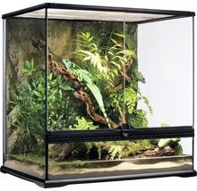 Terrarium, Paludarium Exo Terra avec paroi arrière en pierre naturelle 60 x 45 x 60 cm-thumb-0