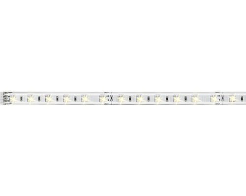 Strip MaxLED 500 1,0 m 7W 5500 lm 3000- 6500 K- blanc chaud - blanc naturel Tunable White 60 LED revêtu 24V convient comme extension pour le set de base, convient au Smart Home après extension