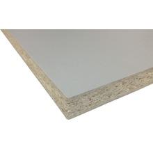 Panneau aggloméré aluminium 881PE 2800x2070x19 mm (découpe possible en magasin)-thumb-1