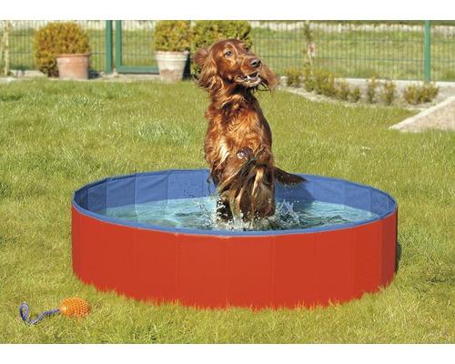 Piscine pour chiens Karlie Doggy Pool 160cm rouge-bleu