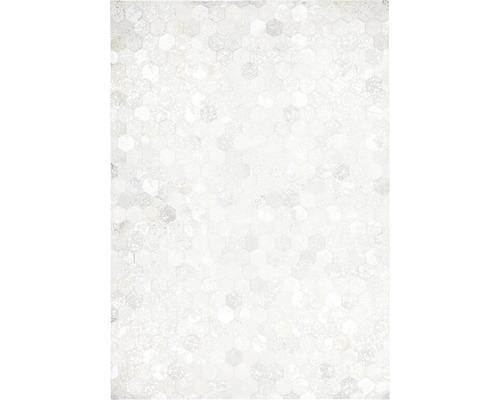 Tapis en cuir Exotic 310 argent 80x150 cm