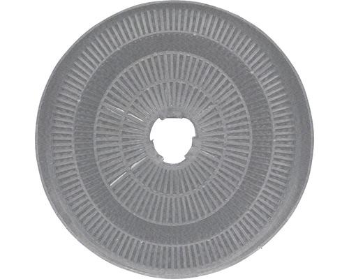 Filtre à charbon CF110