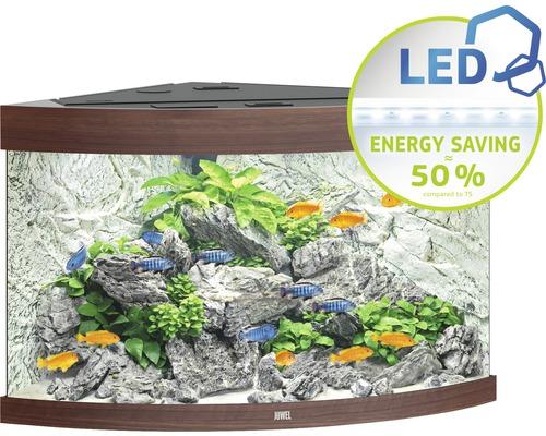 Aquarium Juwel Trigon 190 LED avec éclairage,filtre et chauffage sans sous-meuble bois foncé