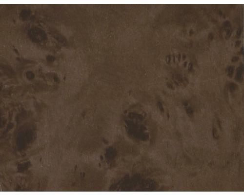 Film d''impression à l''eau racines CW-64-1 100 x 50 cm