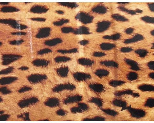 Film d''impression à l''eau gépard marron CD-87 100 x 50 cm