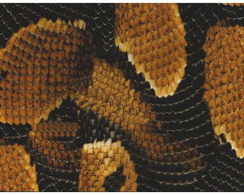Film d''impression à l''eau serpent marron CD-89 100 x 50 cm