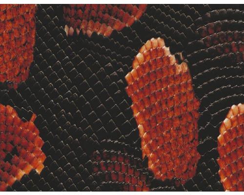 Film d''impression à l''eau serpent rouge CD-90 100 x 50 cm