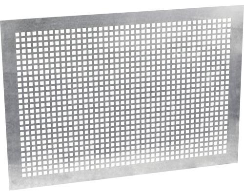 Grille De Protection Pour Fenêtre Basculante 100x60 Cm Hornbach