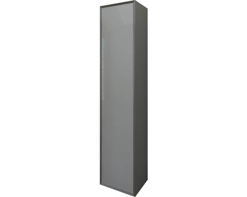 Hochschrank Serie Tessin Höhe 160 Breite 35 Tiefe 27 cm Anthrazit Fronten aus Glas