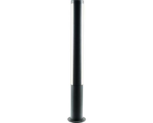 Borne extérieure LED 11W 350lm 3000K blanc chaud h 750mm Lilia graphite