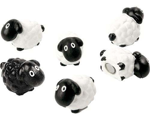 Aimants décoratifs Mouton set de 6 blanc/noir