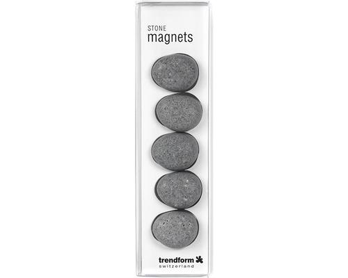Aimants décoratifs Pierres set de 5 gris