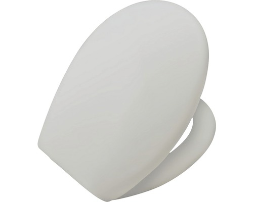Abattant WC Ajon blanc - HORNBACH Luxembourg