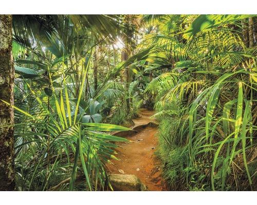 Papier peint photo papier Jungle Trail 368 x 254cm