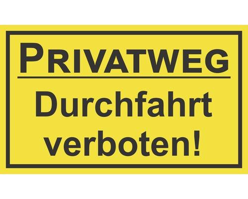 Panneau «Voie privée - Passage interdit» 250x150 mm-0
