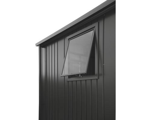 Fenêtre biohort pour Europa 50x60cm, gris foncé-métallique