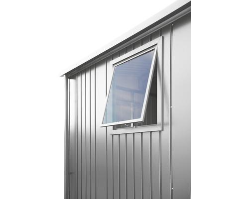 Fenêtre biohort pour abri de jardin Europa, 50x60cm