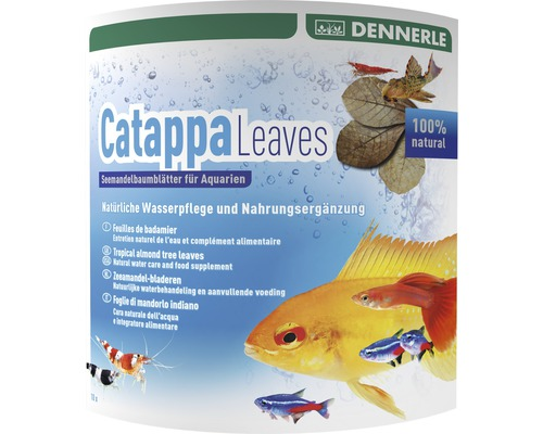 Feuilles d'amande de mer Dennerle Catappa Leaves