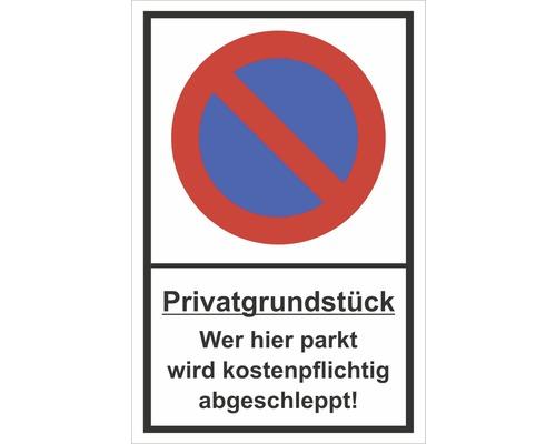 Panneau «Terrain privé - Tout véhicule stationnant ici sera mis en fourrière» 300x200mm-0