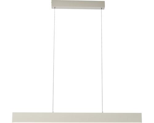 Suspension LED Aura blanche à intensité lumineuse variable 2 ampoules avec ampoule 2000/400lm 3000K blanc chaud l 900mm