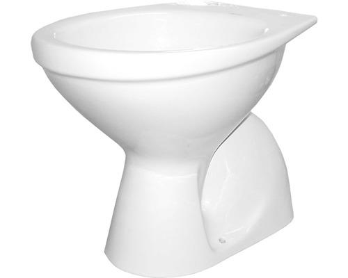 Tiefspül-WC DNP stehend Abgang senkrecht weiß