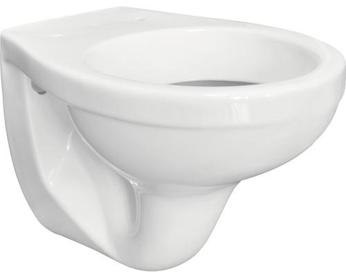 WC à fond creux DNP blanc suspendu