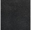 Teppichboden Velours Dahlia Farbe 178 schwarz 500 cm breit (Meterware)