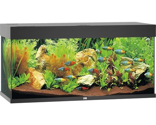 Aquarium Juwel Rio 180 LED avec éclairage,pompe,filtre,chauffage sans sous-meuble noir