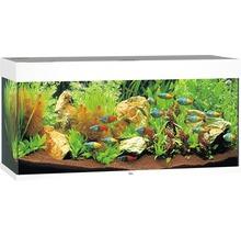 Aquarium JUWEL Rio 180 avec éclairage à LED, pompe, filtre, chauffage sans meuble bas blanc-thumb-0
