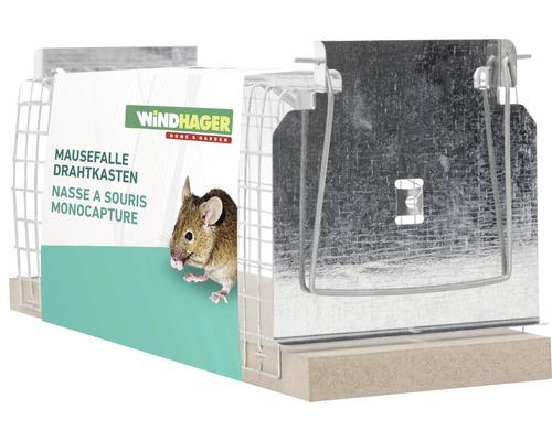 Caisse grillagée pour piège à souris Windhager