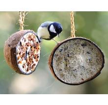Ganzjahresvogelfutter 10 x 1/2-Kokosnüsse, 5 verschiedene Sorten-thumb-2